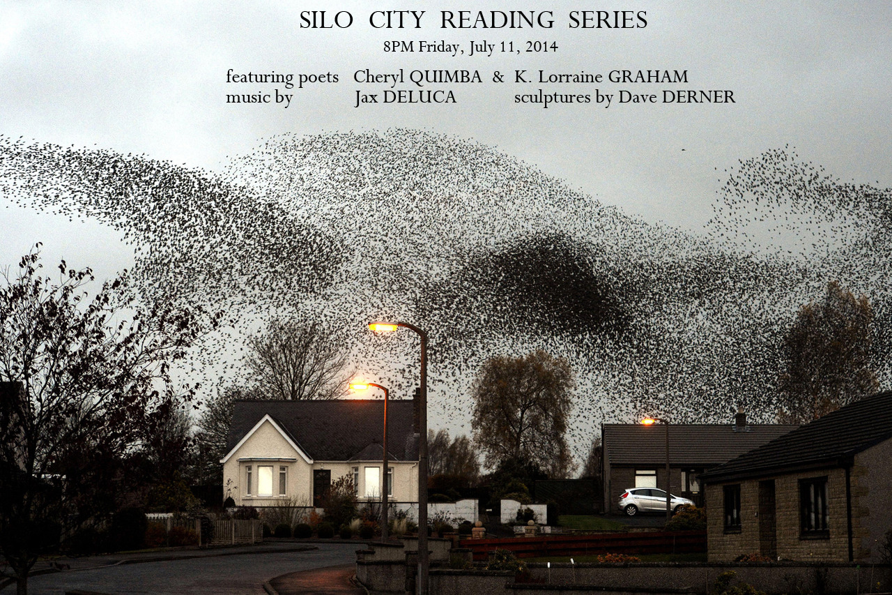 Image #: 20076383 11/11/12 A murmuration of starlings put on an a display over the town of Gretna last night. PA PHOTOS /LANDOV